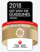 Stroke Gold Plus and Target: Stroke Honor Roll Award Image