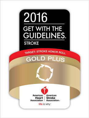 2016 Get with the Guidelines Stroke, Target: Stroke Honor Roll, Gold Plus