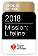 2018 Mission Lifeline Award Image